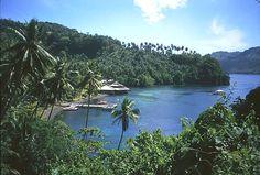 Lembeh Straits , North Sulawesi, Indonesia
