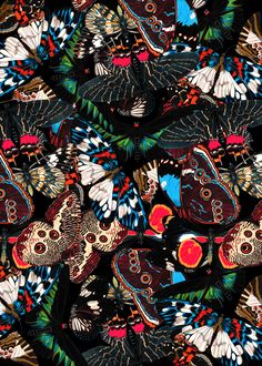 Abstract Iphone Wallpaper, Macbook Wallpaper, Tumblr Wallpaper, Animal Wallpaper, Wallpaper Backgrounds, Acid Trip Art, Hippie Art, Fractal Art, Wall Collage