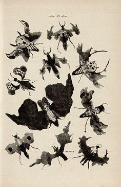Justinus Kerner Klecksographie 1890 winged creatures made from black ink blots