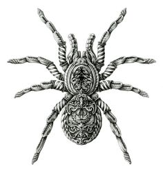 Loads of Zentangle animals for you to draw inspiration from, and then make your own. Including links for animal outlines and zentangle pattern ideas. Spider Drawing, Spider Art, Tarantula Drawing, Zentangle Elephant, Spider Web Tattoo, Insect Art, India Ink, Zentangle Patterns, Zentangles