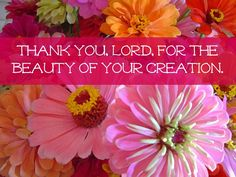 Thank You, Lord...