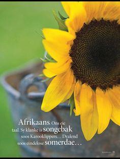 Ditsem! Mense van my Asem en vriende van my hart. Welkom by My Volk. Kom lag, dans, sing, lees en floreer in Afrikaans. Ons Taal, ons Geskiedenis, ons Tradisies en Land! Afrikaans my hartstaal