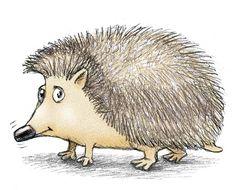 Hedgehog  by  Linda Silvestri