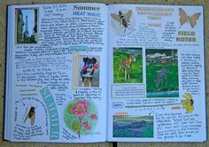summer journal pages