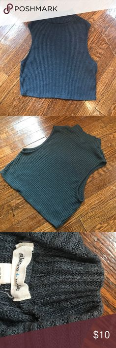 Urban outfitters cropped turtleneck Gently worn. Super soft. Poly/ rayon knit. Although it's lightweight it has a sweater feel. Size medium but could also fit small. Color is a blue / grey. No flaws, just slightly faded. silence + noise Tops Crop Tops