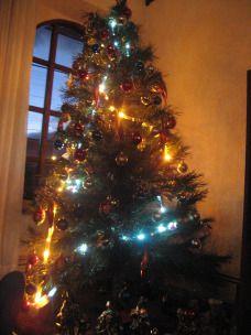 Weihnachtsbaum in Punta Arenas. #Chile
