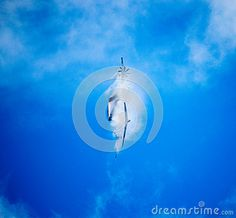 Airbus A400M with water vapour trails