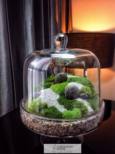 15 incredible terrariums that will really amaze you - Gart . - 15 incredible terrariums that will really amaze you – garden decorating ideas -