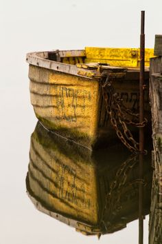 nature | the yellow boat