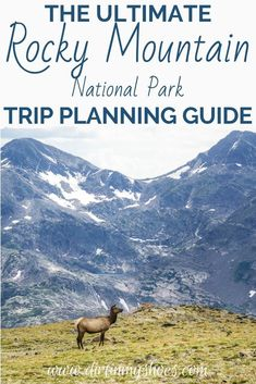 Planning your road trip or family vacation can be a challenge, that's why I created this Ultimate Guide to Rocky Mountain National Park! This travel guide includes things to do, camping tips, directions from Estes Park, hikes to beautiful places and more! Plus a complete itinerary that will ensure you won't miss a thing!