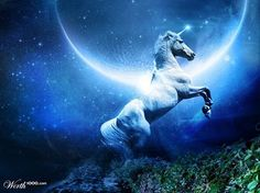 Unicorns #dianacooper #unicorns