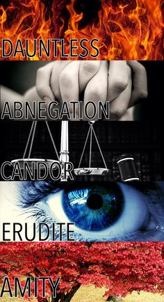~~~ The 5 factions ~~~