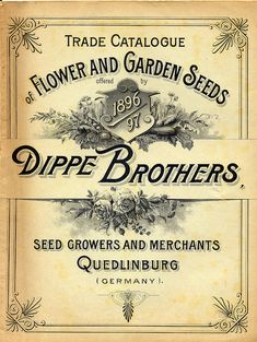 Seed catalogue cover art, 1896