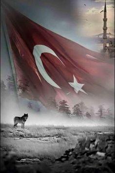 Bozkurt Al Bayrak ile çıkacak yola , Gök Bayrak ile buluşacak kahpe Çin'in bağrında... Ve toy kurulacak tüm Türk boylarıyla Ötüken bağrında... TURAN BİR GÜN MUTLAKA...