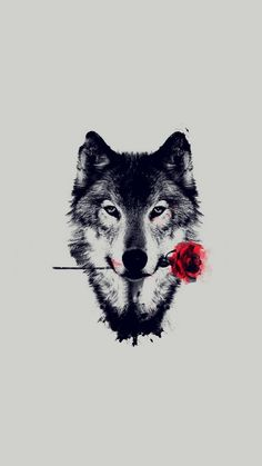 Wolf Red Rose Art Wallpaper iPhone is high definition phone wallpaper. You can make this wallpaper for your iPhone X backgrounds, Tablet, Android or Iphone Wallpaper Wolf, Beste Iphone Wallpaper, Tier Wallpaper, Animal Wallpaper, Wallpaper Backgrounds, Iphone Wallpapers, Iphone Backgrounds, Wolf Background, Wolf Artwork