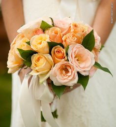 Bridesmaid bouquet with yellow, pink and peach garden roses and lemon leaf, tied with cream ribbon.