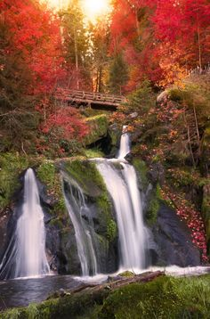 Black Forest Waterfall, Triberg, Germany  photo via watercolor. Oh, I want to see this in person...