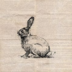 Easter Rabbit Hare Graphic  Easter Bunny by DIYVintageArt on Etsy, $1.20