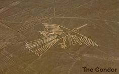 famous markings inca - Saferbrowser Yahoo Image Search Results