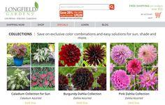 https://www.longfield-gardens.com/index.cfm/fuseaction/plants.ccBig/typeID/55/alphakey/ALL/index.htm