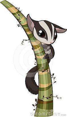 Sugar glider climb the tree