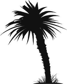 Vectores libres de derechos: Palm Tree Phnix