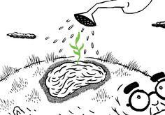 Uma semente de esperança contra o Alzheimer