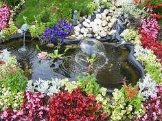 Resultado de imagem para flores especies