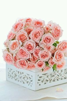 pink roses by Galina Kochergina Romantic Flowers, My Flower, Pretty Flowers, Pretty In Pink, Bouquets, Rose Arrangements, Gardenias, Colorful Roses, Love Rose