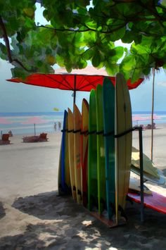 The beaches of Bali look like the perfect fit for a Basta Babe! xx Basta Surf