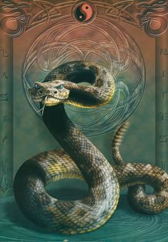 змея: 38 тыс изображений найдено в Яндекс.Картинках