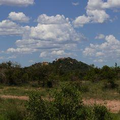 Landscape in Kruger National Park by Isabel Display Advertising, Print Advertising, Kruger National Park, National Parks, Retail Merchandising, Landscape Pictures, Us Images, Wall Art Prints, Landscapes