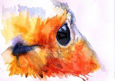 Robin's eye by sarahstokes.deviantart.com on @deviantART