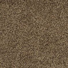 stainmaster private oasis iii trusoft supreme plush carpet sample