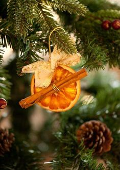 Xmas Tree Decorations Ideas For 2019 Natural Christmas, Noel Christmas, Diy Christmas Ornaments, Homemade Christmas, Rustic Christmas, Winter Christmas, Christmas Tree Decorations, Orange Ornaments, Yule Decorations