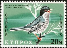 Cyprus Warbler stamps - mainly images - gallery format