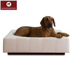 Exklusives Leder Hundebett  Echtes Leder, Handwerkskunst und ein klassisches Design zeichnen dieses Hundezubehör aus - exklusives Leder Hundebett. Das robuste Material eignet sich hervorragend für den Vierbeiner, es ist langlebig, strapazierfähig und leicht zu reinigen. Eine perfekte Polsterung, massive Holzverarbeitung und die Quadratsteppung verwandeln das exklusive Leder Hundebett in einen Rückzugsort mit Liegekomfort.
