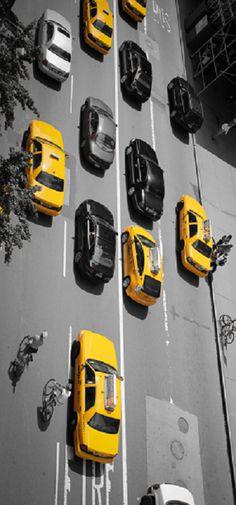 ~NYC | House of Beccaria