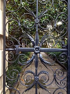 Tag along for a quick tour of Charleston, South Carolina - the beautiful city that Urban Electric calls home. Iron Garden Gates, Garden Fencing, Charleston Gardens, Charleston Sc, Urban Electric, Entrance Gates, Main Entrance, Wrought Iron Gates, Iron Work