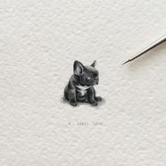 Specializing in miniature paintings, Irene Malakhova creates tiny watercolor animals. Her animal paintings are rendered in an amazing amount of detail. Mini Paintings, Animal Paintings, Animal Drawings, Art Drawings, Miniature Paintings, Drawing Art, Watercolor Illustration, Watercolor Paintings, Bulldogge Tattoo