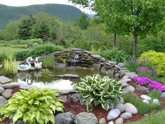 Landscaping design landscaping and stones on pinterest for Planting around a pond suggestions