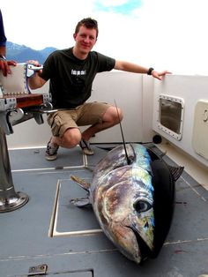 Fishing is good all year round with Albacore and Big Eye Tuna showing up first (present most of the year) followed by the Spearfish and White Marlin!! BIG GAME FISHING IN MADEIRA with http://www.madeiracharters.com/