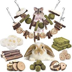 Rabbit Accessories, Wood Sticks, Gerbil, Teeth Care, Rabbit Toys, Chinchilla, Wood Toys, Guinea Pigs, Rats
