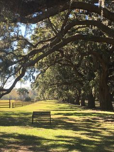 Boone Plantation Charleston