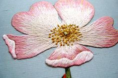 Silk shading, (note touches of yellow added to end of petals)