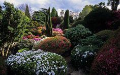 boyx: Leonardslee Gardens - Rif's Art Blog