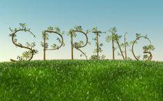 wiosna   Gdzie ta wiosna? 5.00 / 5 (100.00%) 1 gł.