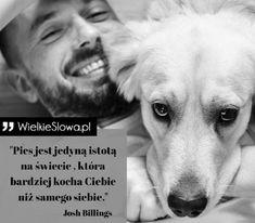 Przyroda i zwierzęta - cytaty, sentencje, aforyzmy o przyrodzie i zwierzętach Best Dog Photos, True Quotes, Best Dogs, Quotations, Labrador Retriever, Motivation, Words, Animals, Inspiration
