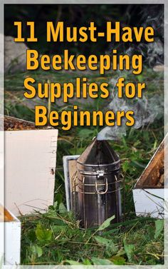11 Must-Have Beekeeping Supplies for Beginners - Countryside Network