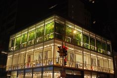 Phyto Universe New York City | Community Post: 39 Insanely Cool Vertical Gardens